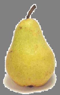 european-pear