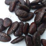 Pawpaw Seed