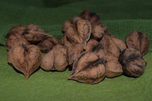 KimK heartnuts