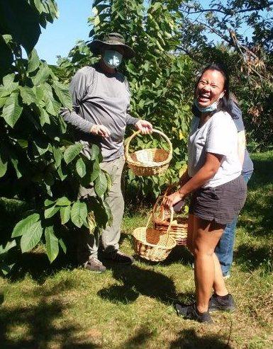Happy pawpaw pickers